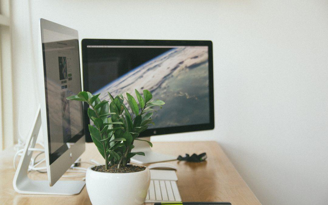 Canberra Web Developer